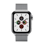 Apple Watch Series 5 (GPS + LTE) 40mm Steel Case with Steel Milanese Loop (MWWT2)